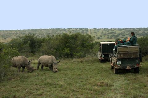 safari-privata-parke